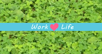 workandlife_box-line_navi_340x180